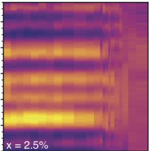 SCRAMscope imaging nematic LevLab